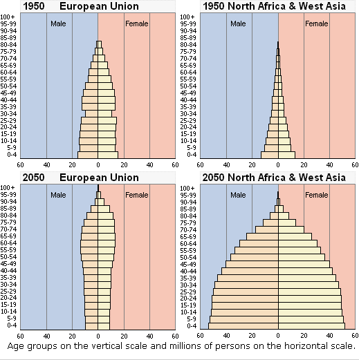Go Back > Gallery For > Population Pyramids Types